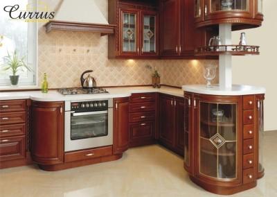 virtuves-baldai-vysnia